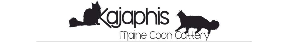 Kajaphi Maine Coons